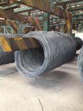 De Staaf van de draad voor Spijker die van Tangshan China maken