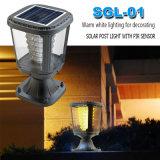 Paisaje exterior al aire libre del jardín Solar LED Pillar Light 1W