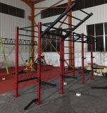 De Apparatuur/de Installatie van de Gymnastiek van de Sterkte van de hamer met de Opslag en de Vleugels van het Centrum (SF1-7004)