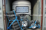 New Economy Straight Horse Float / Horse Trailer du fabricant chinois