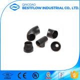 Protezione della saldatura di testa del acciaio al carbonio Ansib16.9