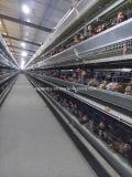 Gaiola de alimentação da galinha do equipamento das explorações avícolas do baixo preço com bebedor