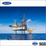 Nuova tecnologia HEC in applicazione del giacimento di petrolio con il prezzo poco costoso
