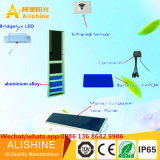 태양 LED 점화 제조자 최신 판매 높은 광도 LED 빛