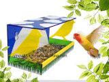 Оптовые клетки птицы с печатание логоса