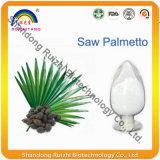 O volume da natureza considerou o Palmetto P.E.
