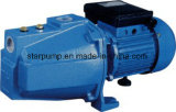 selbstansaugende elektrische Wasser-Pumpe des Strahlen-1HP