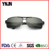Lunettes de soleil unisexes de logo de Ynjn de grand dos fait sur commande en gros de mode (YJ-F8245)