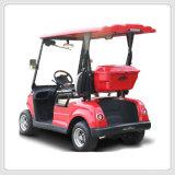 EEC (DG-LSV2-2)를 가진 2-Seater 에 도로 저속 차량 새 모델