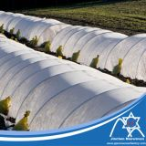 Tela anti UV não tecida para agricultura