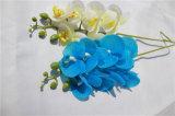 Preiswerter Phalaenopsis-künstliche Blumen für Garten-Dekoration