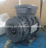 Motor trifásico especial del reductor del motor del reductor