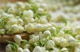 Olio essenziale del gelsomino estratto da CO2