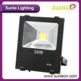 小型立場240Wの穂軸LEDの屋外の洪水ライト(SLFI220)