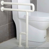 Barres de nylon d'aide d'handicap de salle de bains et d'acier inoxydable