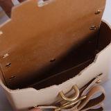 Sg001. Il modo delle borse del progettista del sacchetto delle signore delle borse del sacchetto di cuoio della mucca dell'annata della borsa del sacchetto di spalla insacca il sacchetto delle donne