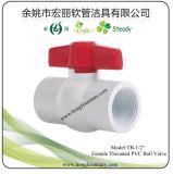 """1/2の""""女性によって通される管PVC球弁"""