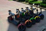 60V/12ah 리튬을%s 가진 새로운 디자인 전기 자전거