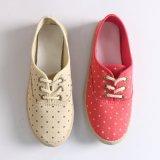 古典女性または女性のキャンバスの偶然の平らな靴をひもで締めなさい
