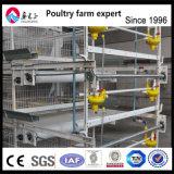 Gabbia di strato della batteria di Chiken della strumentazione dell'azienda avicola di alta qualità del rifornimento della fabbrica per l'azienda agricola di Poulty