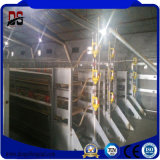 Impresa commerciale di pollicultura della struttura d'acciaio dell'indicatore luminoso della costruzione