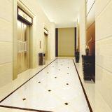 Белая деревянная линия плитка фарфора камня Polished