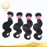 7Un grado de la cutícula del cabello 100% virgen sin procesar Europeo de Derechos Clip Hair Extension