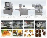 Encrusting en Forming Machine voor Mooncake