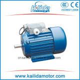 Motore asincrono di inizio del condensatore di CA 220V di fase di Singl