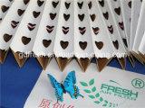 Filtros de papel plissados, filtros de andrea, papel de filtro de tinta