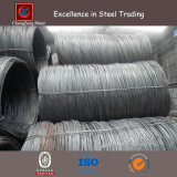 HRB400 Deformed Steel Rebar met Coil (CZ-R31)