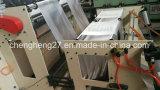 Chzd-E voller automatischer unterer Dichtungs-Beutel, der die Maschine herstellt (Zweikanal)