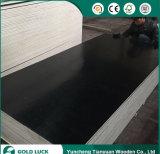 la melammina nera di vendite calde di 1220X2440mm ha affrontato il compensato edificio di Combi
