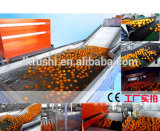 De Factrory da fonte máquina de lavar das frutas dos legumes com folhas diretamente com condição nova
