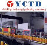YCTD 세륨 증명서 (YCBS60)를 가진 대중적인 수축 필름 포장기