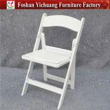 Kd Gold Transparent Наполеон Plastic Chair для Rental и банкета (YC-P23-1)
