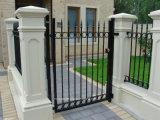 외면을%s 이용된 새로운 디자인 금속 강철 문