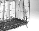 El bloque de la economía de la jaula la jaula de perro mascota