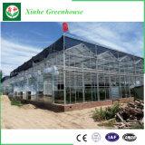 Casa verde de la hoja/del plástico/de cristal del policarbonato para los vehículos/jardín