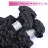 De beste Bundels van het Menselijke Haar voor In het groot Maagdelijk Zwart Maleis Haar weven Krullend