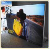 무역 박람회 자유로운 서 있는 직물 마스크 가벼운 상자