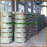 N06022/C22 Nickel Alloy Coil e Sheet per Chlorination Systems