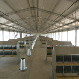 Estrutura de aço de alta qualidade de exportação Birdhouse