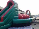 2016 Inflatable popolare Running Ball Sport Games da vendere
