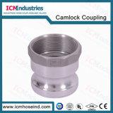 6 de alumínio de alta qualidade''npt Conector Rápido de Engenharia Química roscado