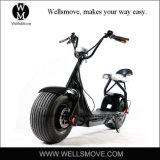 [1000و] [هي بوور] درّاجة ناريّة كهربائيّة مع [دووبل ست] جبهة مؤخّرة تعليق