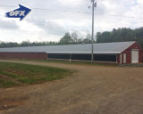 Flattop Metal Frame Insulated Prefabricated/Prefab Poultry House