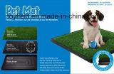HundTraning Toiletten-bewegliches Haustier Potty