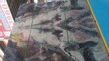 In het groot Chinees Groene Marmer van Fantaxy Landscaple van de decoratie het Materiële