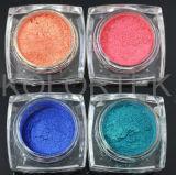 Possedere i pigmenti allentati dell'ombretto di marca
